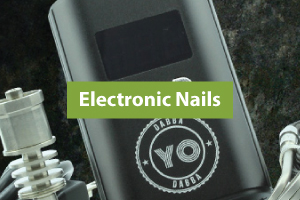 Cat_Electronic_Nails